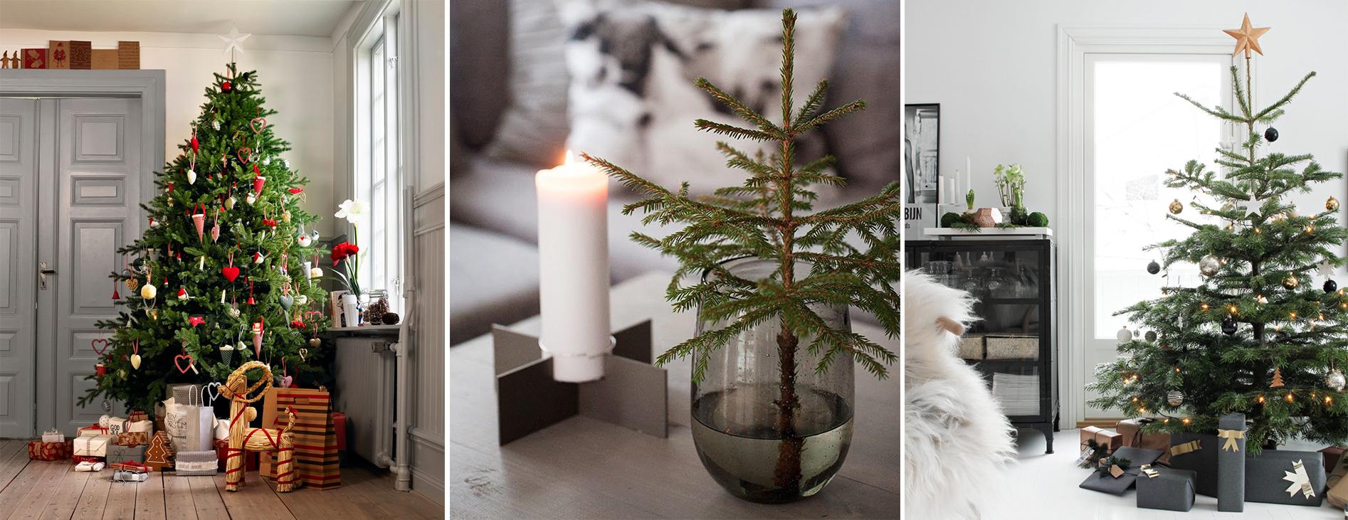 10 vackra granar att inspireras av i jul