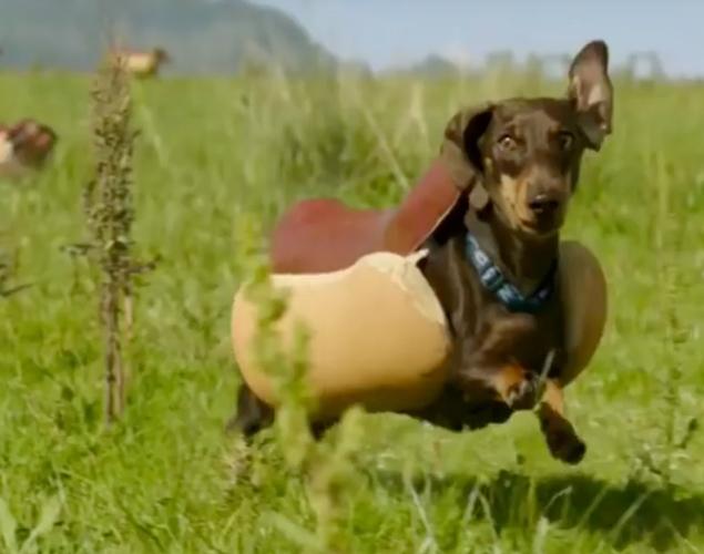 Proffsiga Super Bowl-reklamfilmerna som fullständigt välte internet