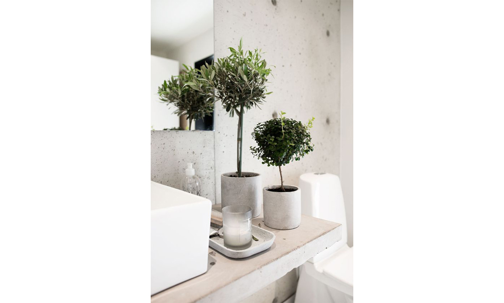 växter i badrum