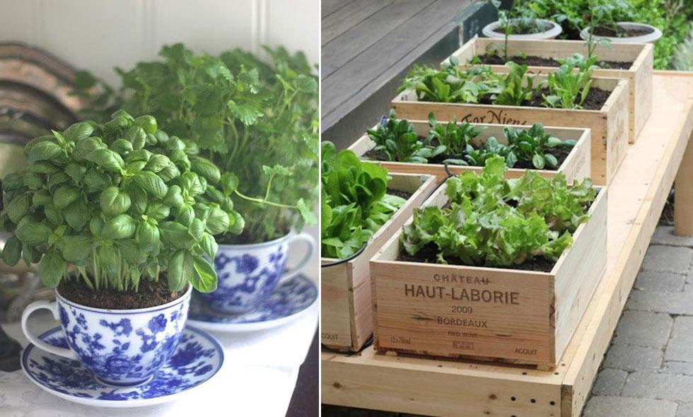 plantera på balkong