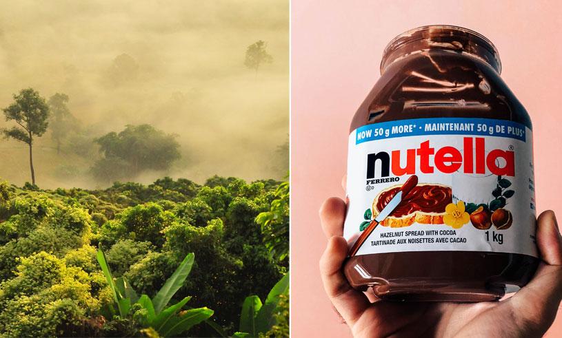 nutella utan palmolja