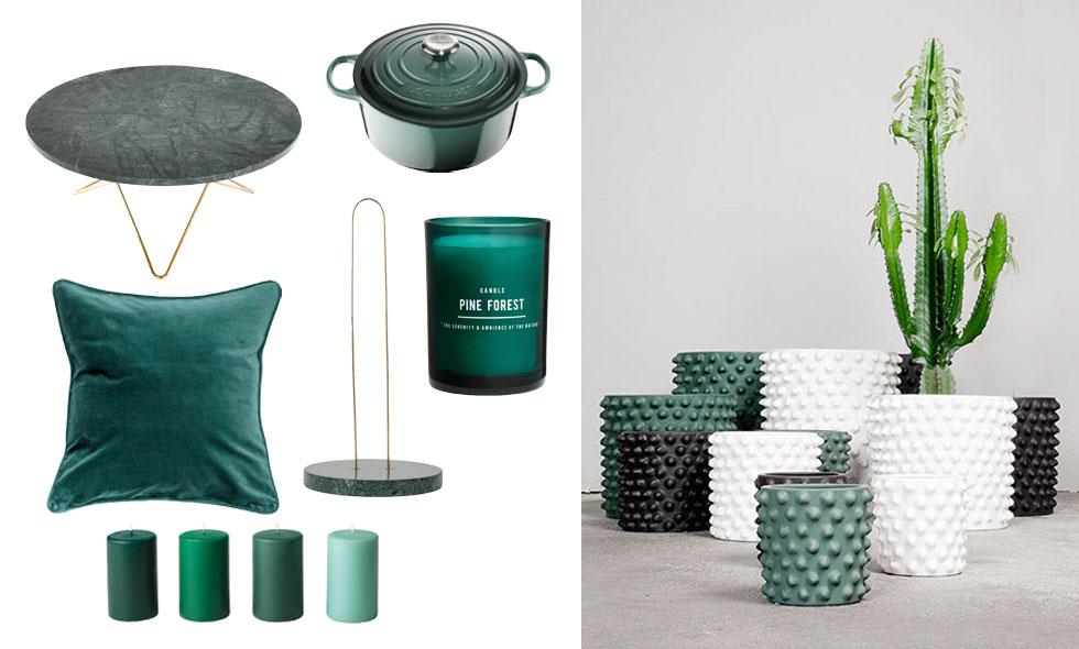 Sanna Fischer tipsar om 10 gröna favoriter till hemmet