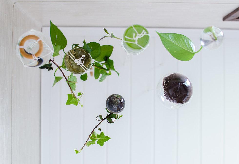 8 smarta DIY hur du kan inreda med växter