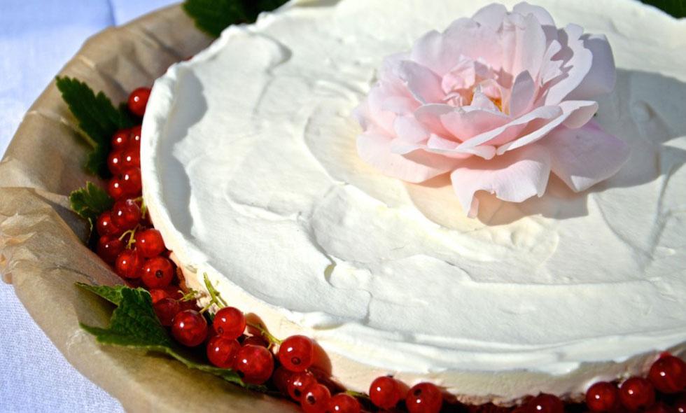 Cheescake-Lisa-Abefelt-bästa-matbloggarna-matblogg