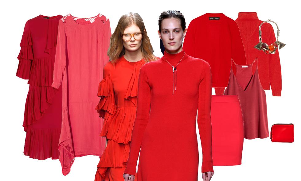 Rödaste rött – höstens starkaste färg