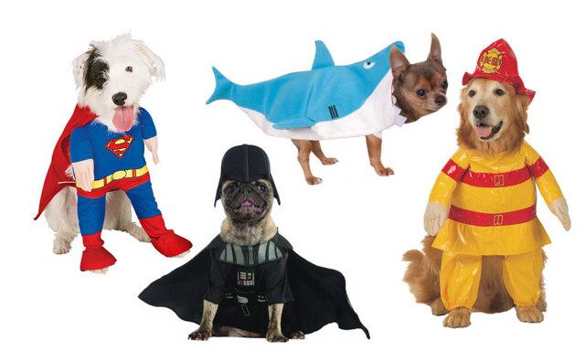 11 riktigt roliga Halloweenkostymer till hund