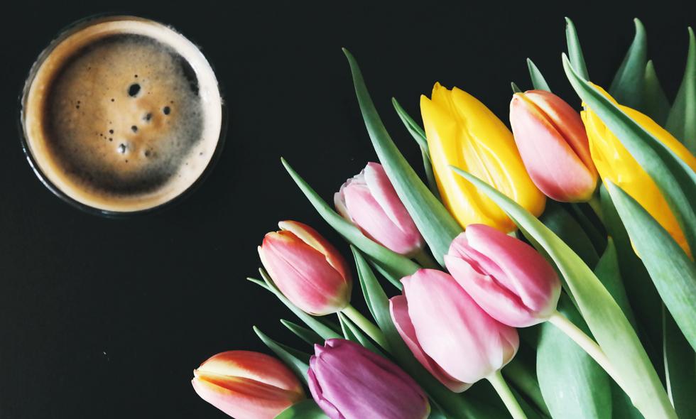 kaffe-forskning