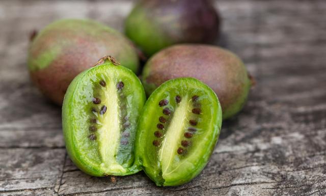 Nu kommer kiwibäret till Sverige – spås bli nästa superfood