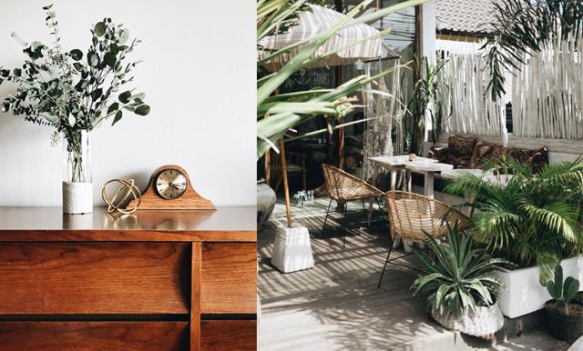 Enkla sätt att förvandla ditt hem på nolltid – med hjälp av växter