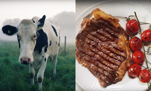 Kära köttbit: Här är anledningen till varför Coop (och alla andra) vill prata