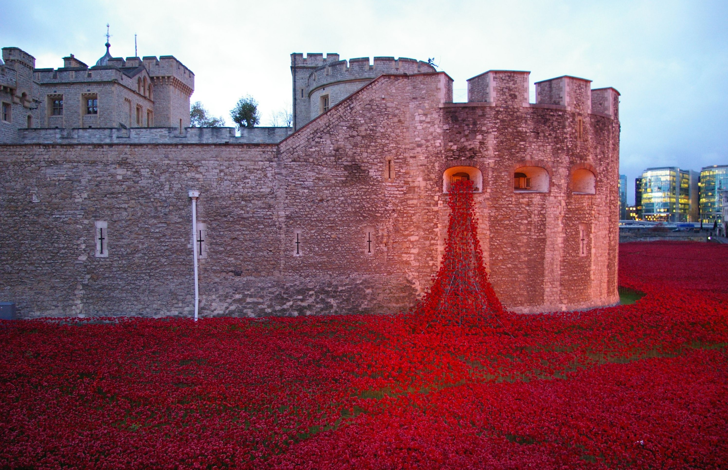 'Blood Swept Lands and Seas of Red' poppy installation at The Tower of London, Britain - 12 Nov 2014