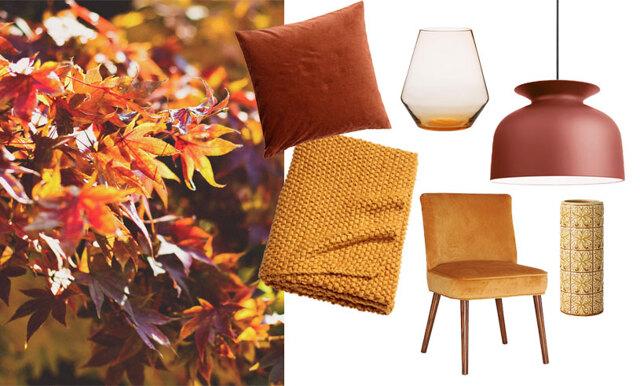 Släpp in hösten i vardagsrummet – 13 köp i gula och rostiga nyanser