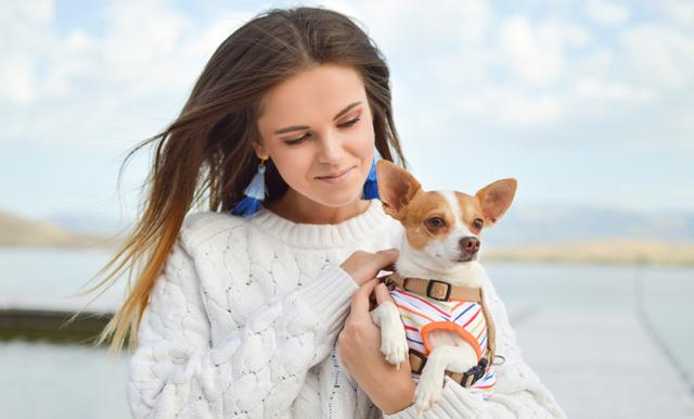 6 tecken på att du hittat din själsfrände i livet - i en hund