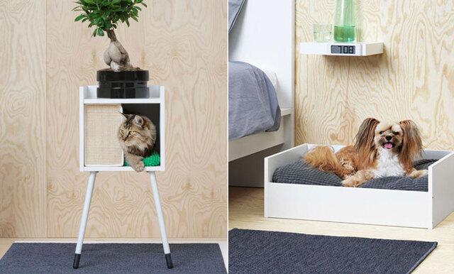 Så gulligt! Nu lanserar Ikea sin första kollektion med möbler för husdjur
