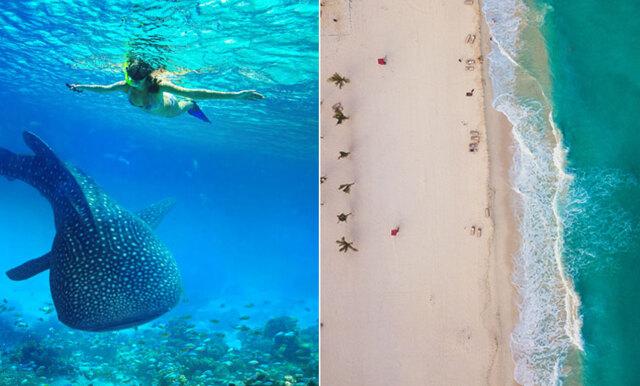 Vill du bo på lyxhotell, utforska Cancún och samtidigt få en galet hög lön? (HALLÅ drömjobbet!)