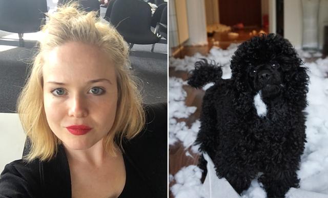 """Jeanette Polsäter: """"7 anledningar till att du inte ska skaffa hund"""""""