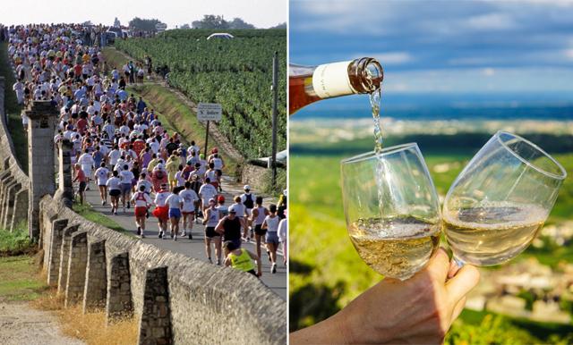 Drick vin och ät ost – här är maratonloppet för alla vinälskare