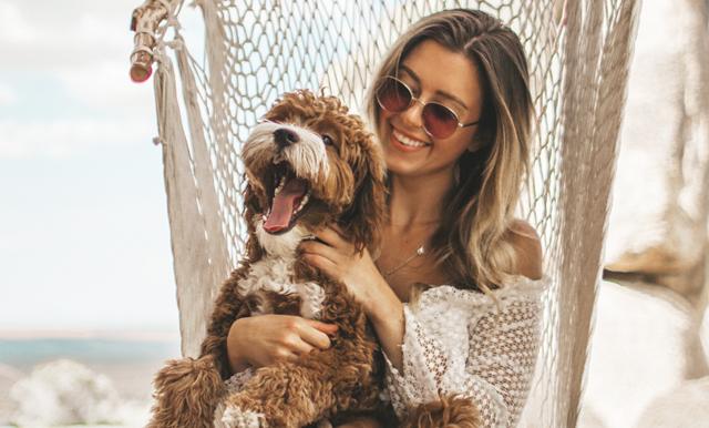 Studie visar – din hund förstår vad du säger till den!