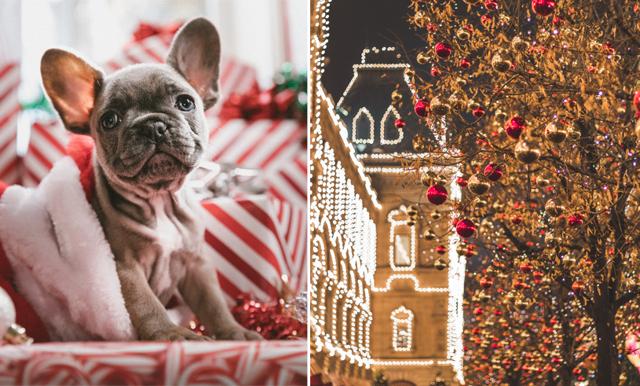 Maxa julkänslan –nu kan jobba som tomtenisse!