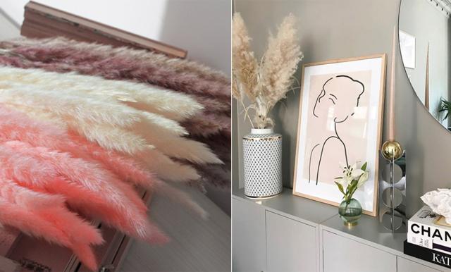 Inredningsdetaljen nummer 1 – här klickar du hem vitt, brunt och rosa pampasgräs