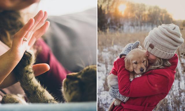 Ny studie: Husdjur effektivt mot depression
