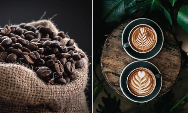 Är du en riktig kaffeälskare? Då kan din favoritdryck vara hotad av klimatet
