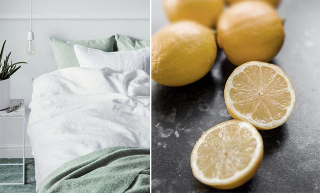 Miljöbovarna i hemmet – här är 5 saker att byta ut direkt!