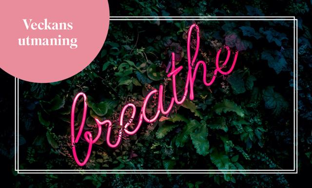 Haka på djupandningsövningar med Cassandra Brunstedt – ny utmaning varje vecka!