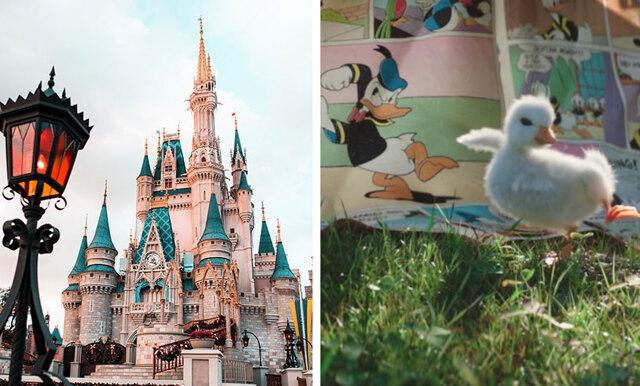 Disneyland Paris nya reklamfilm får oss att smälta- sötaste vi sett