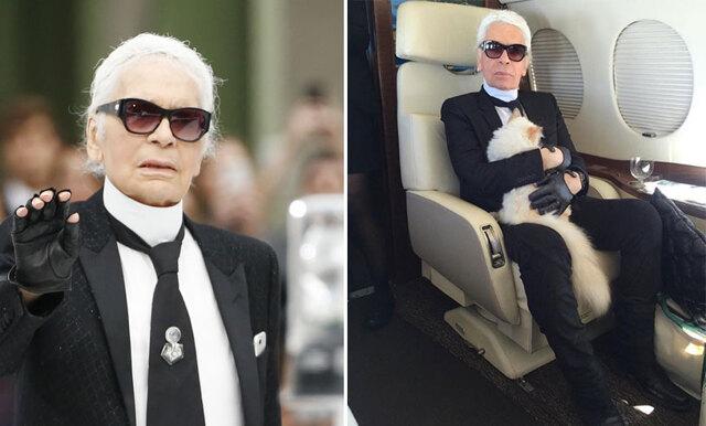 Otippade arvingen - Karl Lagerfelds katt Choupette kan ärva den enorma förmögenheten