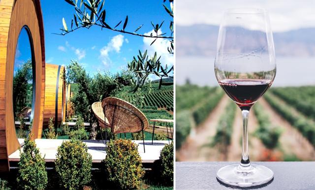 Älskar du vin? Då kommer du att vilja checka in på det här hotellet!