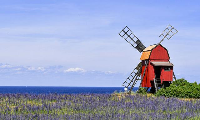 WOW! Nu kan en pittoresk väderkvarn på Öland bli ditt hem (för oväntat lågt pris)!