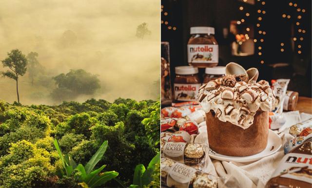 Högtider utan miljöförstöring – här är godiset som innehåller palmolja