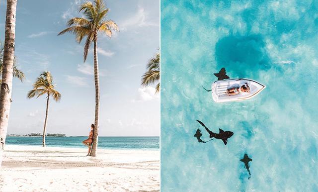 Trött på vardagen? Nu kan du och dina vänner flytta till Bahamas i två månader