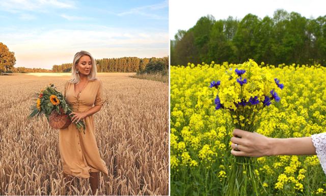 Nu kan det vara stopp för influencers att ta bilder ute på fälten