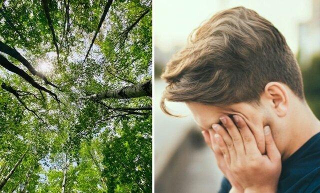 Plågad av pollen? – 5 tips för att hantera torra ögon