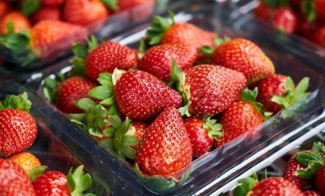 Så håller du jordgubbarna färska – 4 enkla knep
