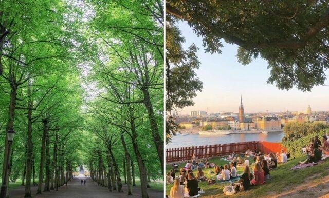 Sol, vänner och parkhäng – 4 härligaste parkerna i Stockholm