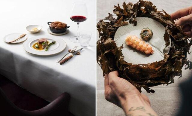 Michelin Stjärnor 2021 – Sverige har fått fyra nya Michelin-restauranger och här hittar du dem