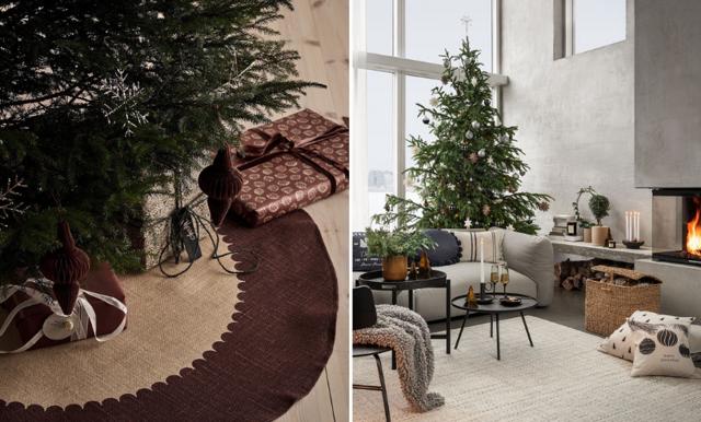 Så tidigt kan du köpa julgran så att den håller  till jul