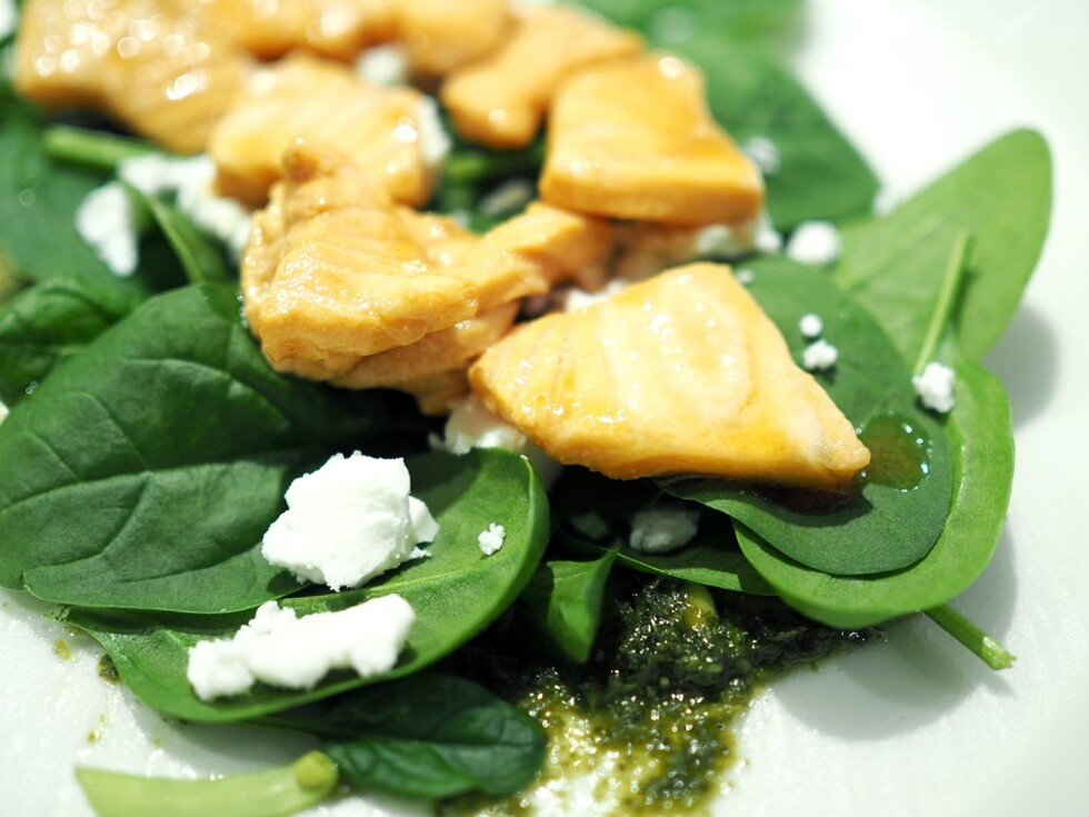 glutenfri-wrap-ida-warg-1