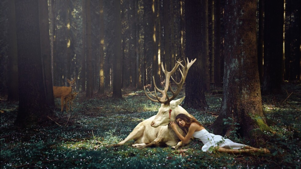 girl_deer_forest_blood_trees_96876_2560x1440