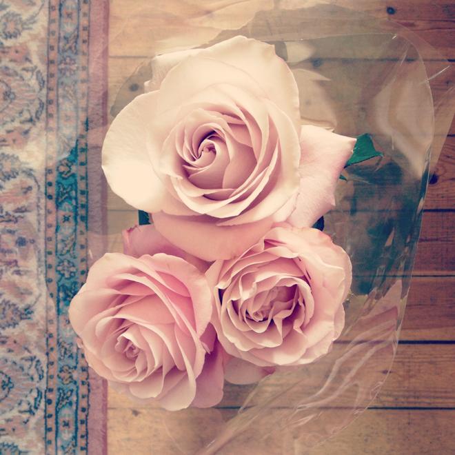 Fina rosor från Malin