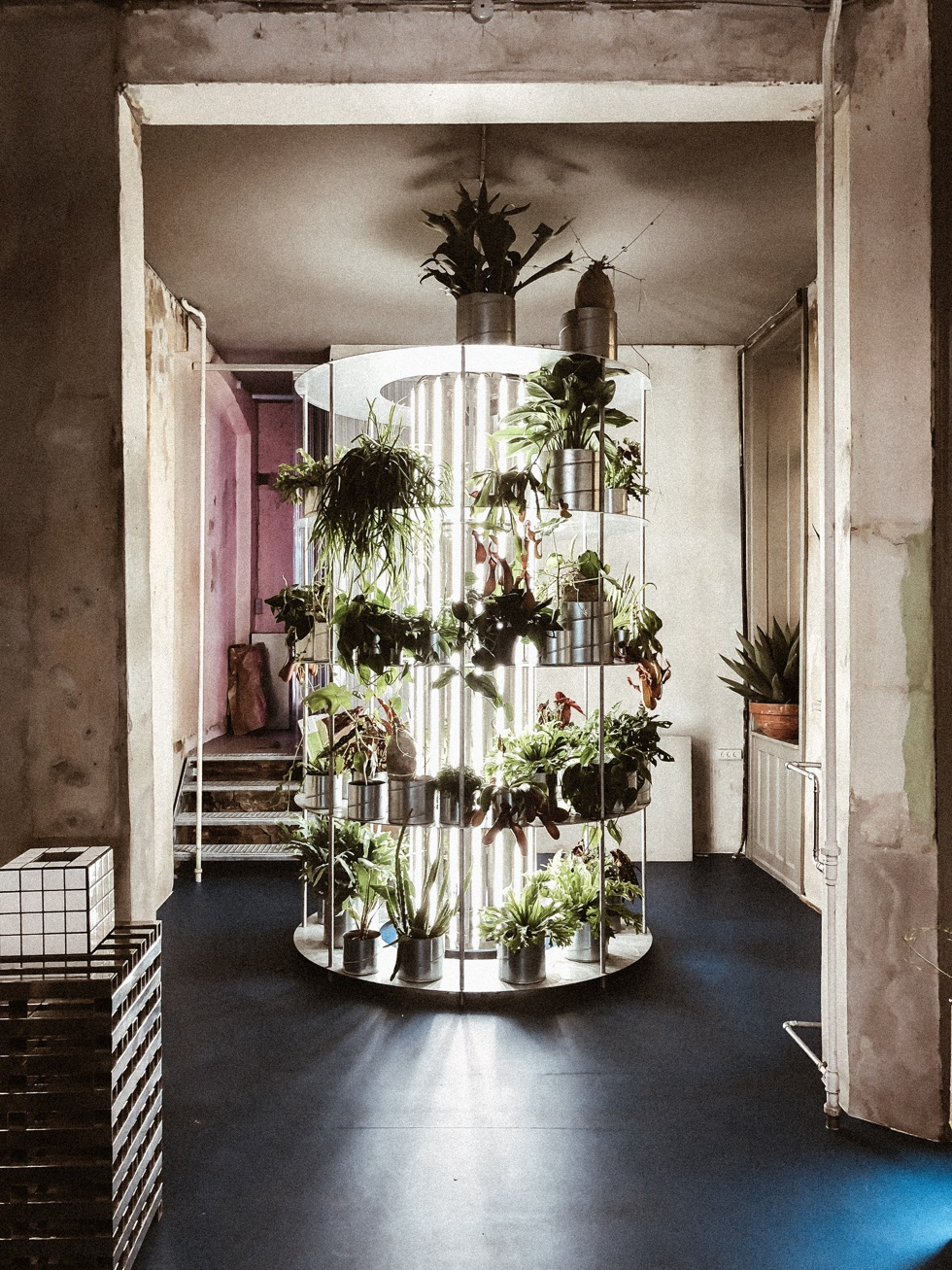 sara-che-copenhagen-danmark-flower-shop