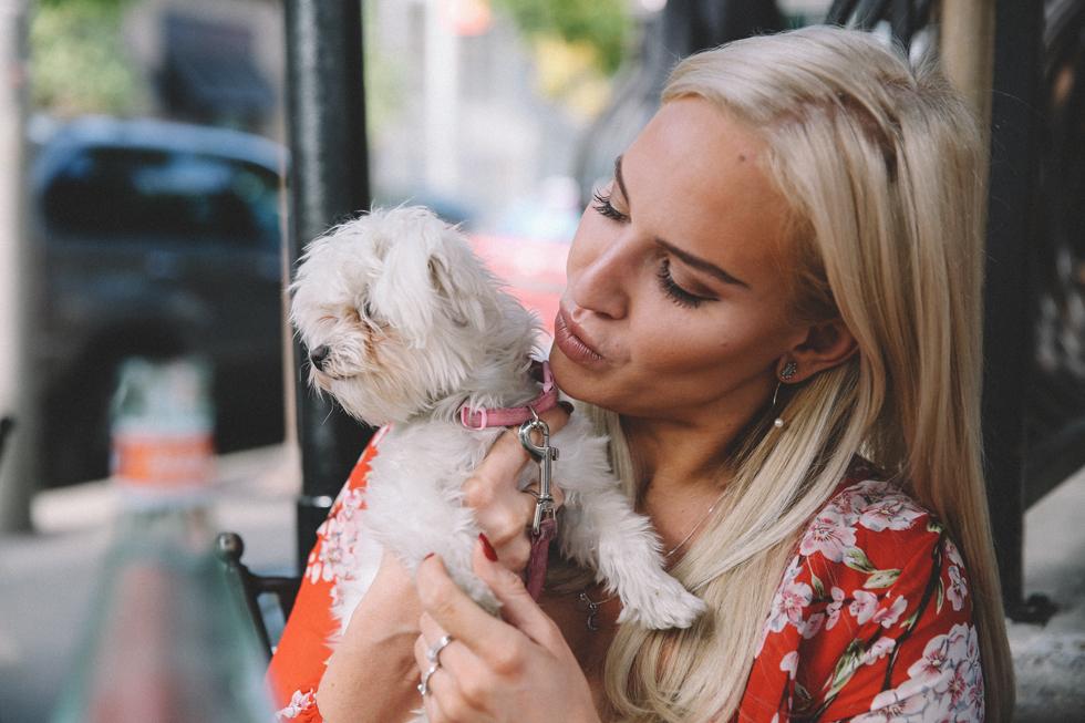 Lovie-Dog