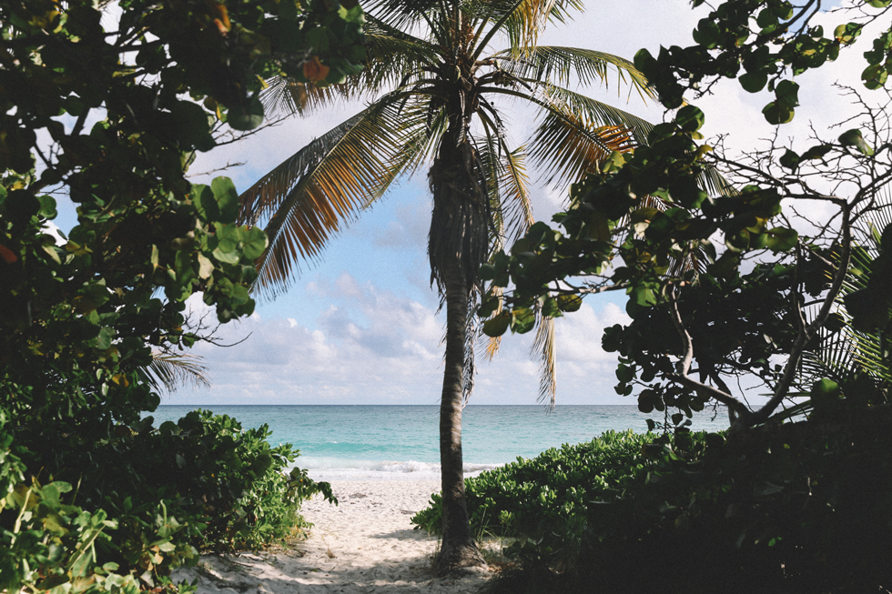 Novio Beach