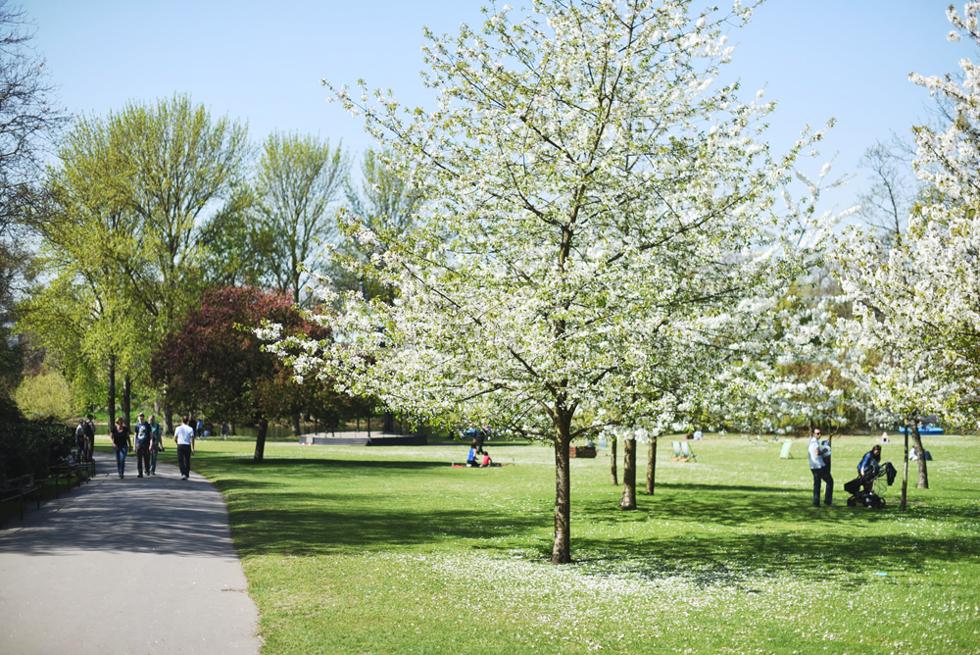 Regent's park, Londonguide