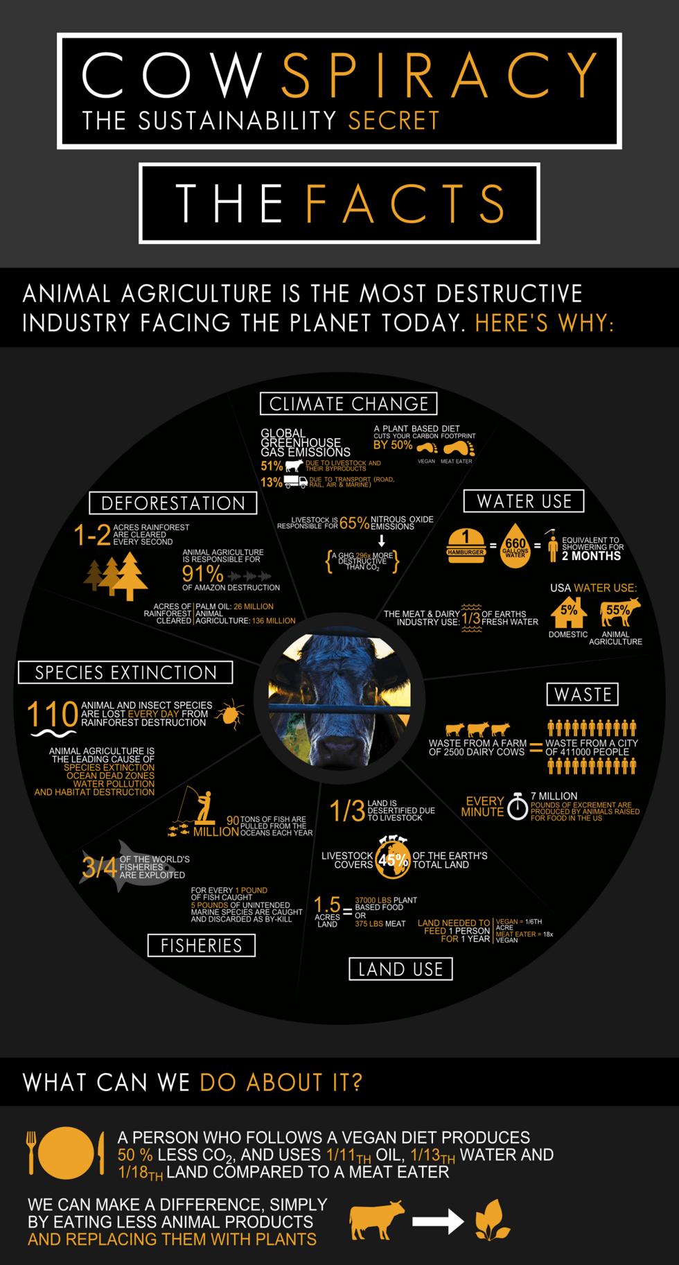 Luke-Jones.-Cowspiracy-Infographic-Imperial-Updated