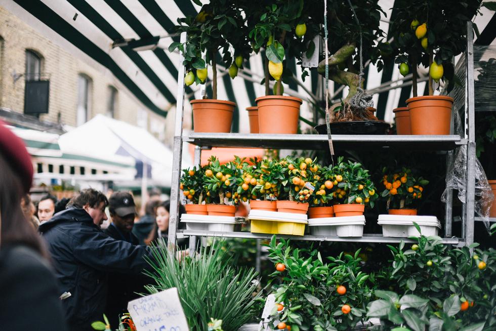 london flora wistrom-4