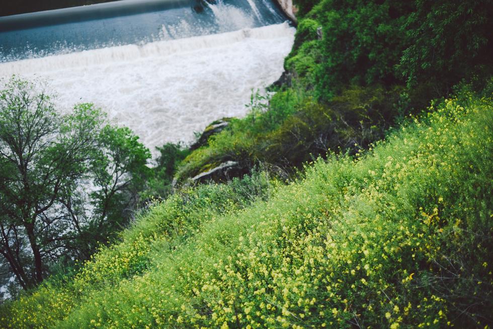 tågluff interrail flora wistrom-94